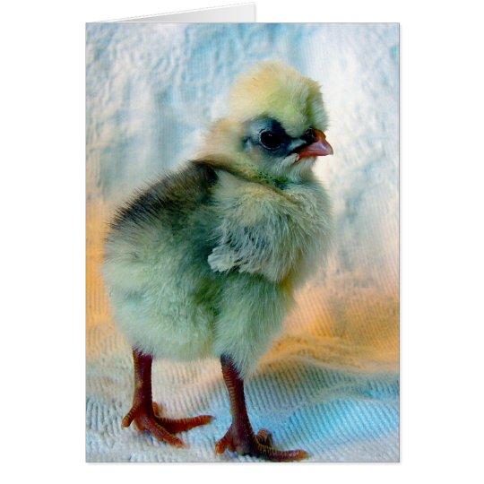 Polish Chick Card