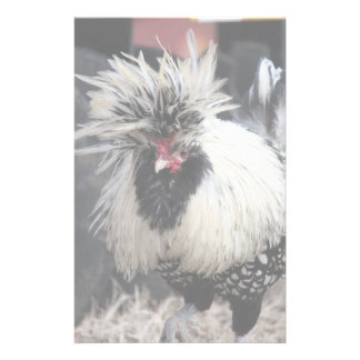 Polish Crested Rooster Stationery