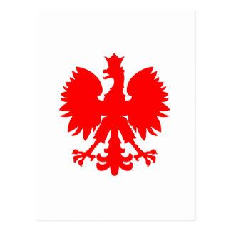 Polish Falcon (Eagle) Postcard