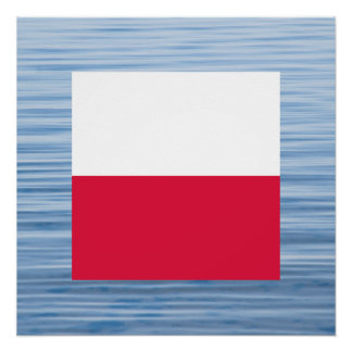 Polish Flag Floating on water Perfect Poster