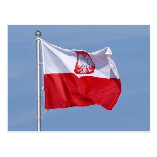 POLISH FLAG POSTCARD