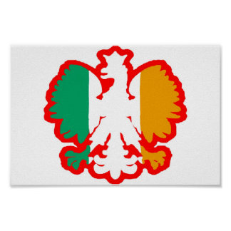 POLISH/IRISH FLAG POSTER