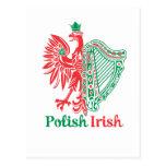 Polish Irish Postcard