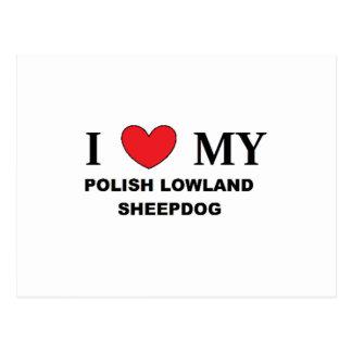 polish lowland sheepdog love postcard