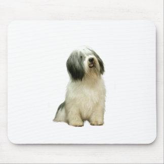 Polish Lowland Sheepdog (PON) - A Mouse Pad