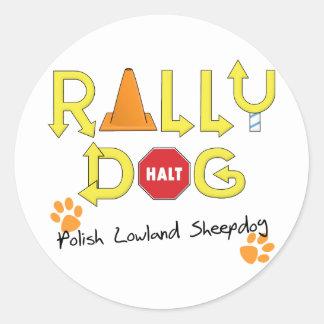 Polish Lowland Sheepdog Rally Dog Classic Round Sticker