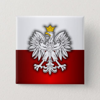 Polish Steel 4 Pinback Button
