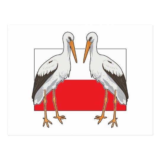 Polish White Stork Postcard