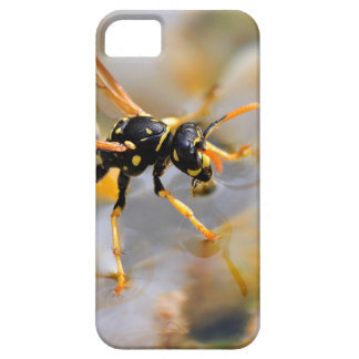 Polistes dominula on drinking water iPhone 5 covers