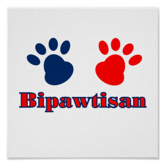 Política de Bipawtisan Póster