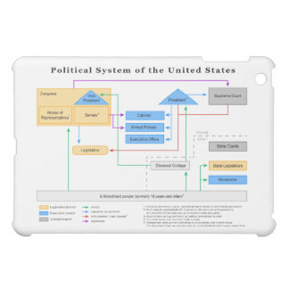 Political System of the United States Diagram iPad Mini Cases