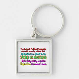 Politicians Spayed and Neutered Silver-Colored Square Keychain