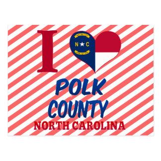 Polk County North Carolina Post Card