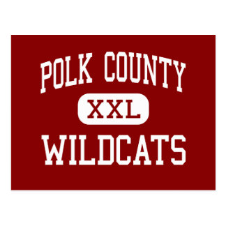 Polk County - Wildcats - High - Benton Tennessee Postcard