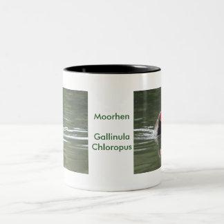 Polla de agua y reflexión taza de café de dos colores