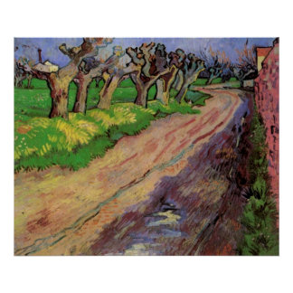 Pollard Willows by Vincent van Gogh Poster
