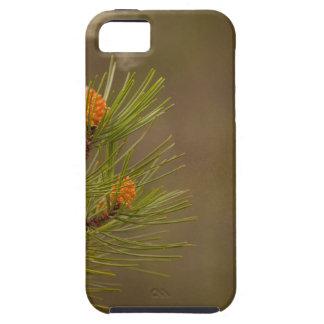 pollen iPhone SE/5/5s case