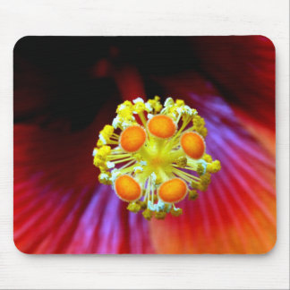Pollinate Me Mouse Pad