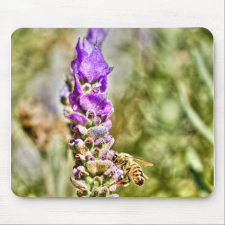 Pollinate Mouse Pad