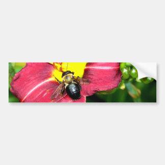 Pollinating Bee Bumper Sticker