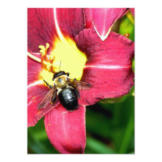 Pollinating Bee 5.5x7.5 Paper Invitation Card