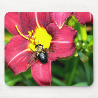 Pollinating Bee Mouse Pad