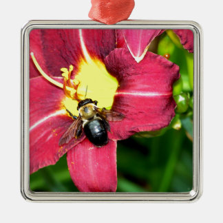 Pollinating Bee Christmas Ornaments