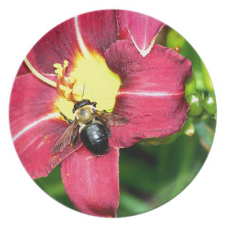 Pollinating Bee Plate