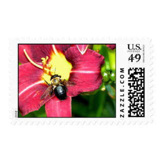 Pollinating Bee Postage Stamp