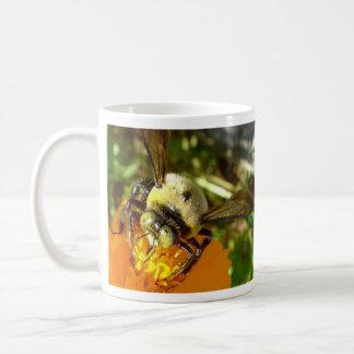 pollinating bees mug