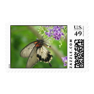 Pollinating Butterfly Postage Stamp