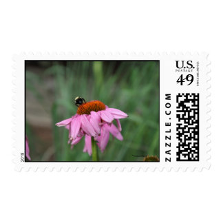 Pollinating Postage Stamps