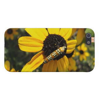 Pollination Cover For iPhone SE/5/5s