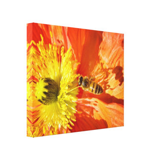 Pollination in Orange and Yellow canvas wrap