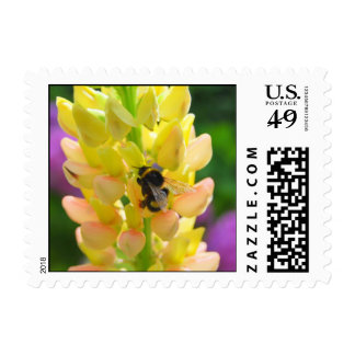 Pollination! It's a good thing! Postage Stamp