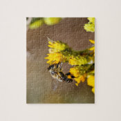 Pollination Jigsaw Puzzles
