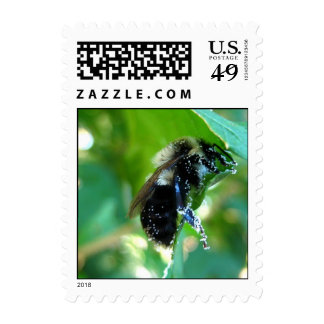Pollination Postage Stamps