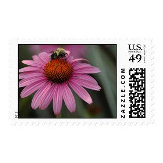 Pollination Postage