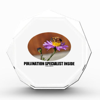 Pollination Specialist Inside (Bee On A Flower) Award