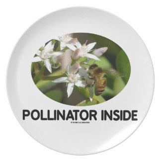 Pollinator Inside (Bee On White Flower) Dinner Plate