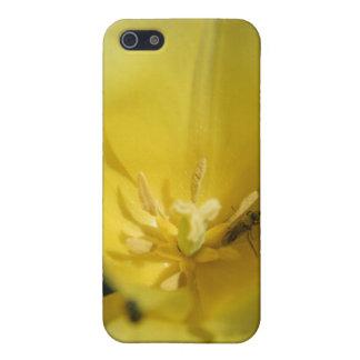 Pollinator iPhone SE/5/5s Cover