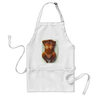 pollo adult apron