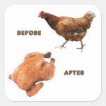 Pollo antes y después colcomanias cuadradass