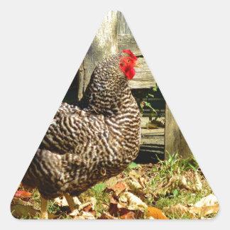 Pollo blanco y negro calcomanía trianguladas personalizadas