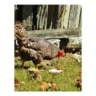 Pollo blanco y negro por la cerca membretes personalizados