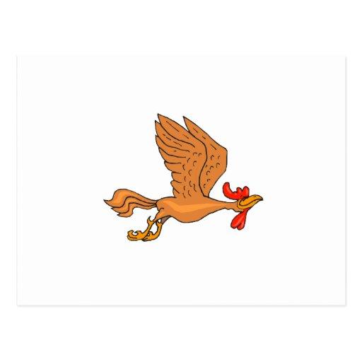 Pollo de Chachi Postal