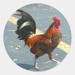 Pollo de Key West Etiqueta Redonda