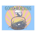 Pollo de la buena mañana postal