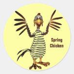 Pollo de primavera etiquetas redondas