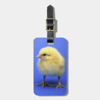 Pollo del bebé etiquetas para maletas